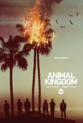 Animal.Kingdom.2016.S02E08.1080p.AMZN.WEB-DL.DDP5.1.H.264-NTb ~ 3.9 GB