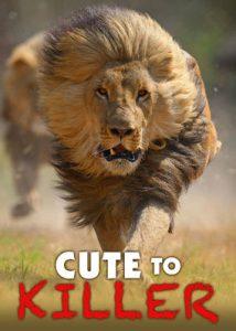 Cute.to.Killer.2014.720p.NF.WEBRip.DD5.1.x264-NTb ~ 2.7 GB