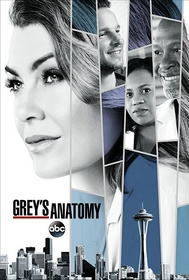 Greys.Anatomy.S15E17.iNTERNAL.720p.WEB.h264-BAMBOOZLE – 624.4 MB