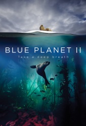 [BD]Blue.Planet.II.2017.Disc.1.2160p.UHD.Blu-ray.HEVC.DTS-HD.MA.5.1 ~ 52.69 GB
