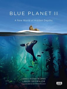 [BD]Blue.Planet.II.2017.Disc.2.2160p.UHD.Blu-ray.HEVC.DTS-HD.MA.5.1 ~ 49.11 GB