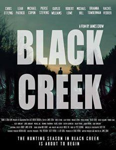 Black.Creek.2017.1080p.WEB-DL.AAC2.0.H264-FGT ~ 2.6 GB