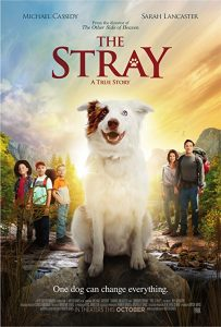 The.Stray.2017.720p.BluRay.DD5.1.x264-DON ~ 4.1 GB