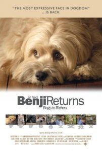 Benji.Off.the.Leash.2004.720p.NF.WEB-DL.DD2.0.x264-Antifa ~ 3.2 GB