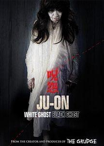 Ju-On.Black.Ghost.2009.BluRay.720p.DTS.x264-CHD ~ 2.5 GB