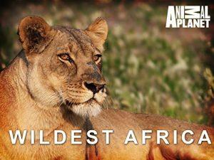 Wildest.Africa.2011.S01.720p.BluRay.FLAC.2.0.x264-DON ~ 12.6 GB