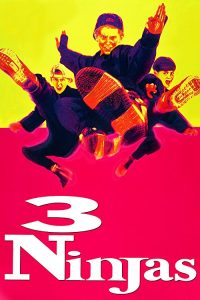 3.Ninjas.1992.1080p.WEB-DL.AAC2.0.H264-CDUB ~ 3.7 GB
