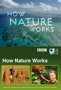 BBC.How.Nature.Works.2012.S01.720p.BluRay.DTS.x264-HDS ~ 8.1 GB
