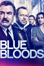 Blue.Bloods.S09E12.720p.HDTV.x264-KILLERS – 962.1 MB