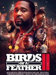 Birds.Of.A.Feather.2.2018.720p.AMZN.WEB-DL.DD2.0.H.264-CMRG ~ 1.5 GB