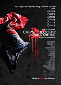 Crips.And.Bloods.Made.In.America.2008.1080p.AMZN.WEB-DL.DD5.1.H.264-QOQ ~ 6.6 GB