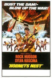 Hornets.Nest.1970.1080p.BluRay.REMUX.AVC.DTS-HD.MA.2.0-EPSiLON ~ 19.7 GB