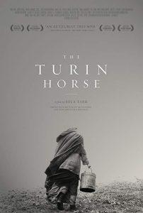 A.Torinoi.Lo.2011.720p.BluRay.FLAC.x264-ThD ~ 9.4 GB
