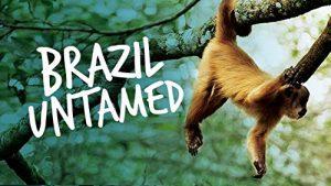 Brazil.Untamed.S01.1080p.AMZN.WEB-DL.DDP2.0.H.264-NTb – 17.8 GB