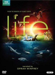 Life.2009.S01.720p.BluRay-EbP ~ 29.2 GB