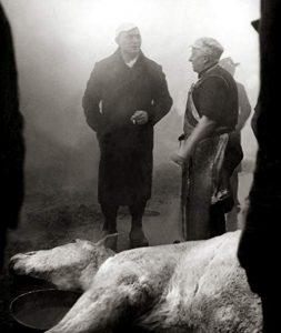 Blood.of.the.Beasts.1949.720p.BluRay.x264-BiPOLAR – 890.9 MB