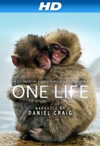 One.Life.2011.1080i.BluRay.REMUX.AVC.DTS-HD.MA.5.1-EPSiLON ~ 17.3 GB