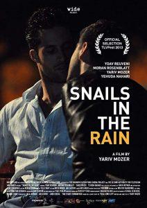 Snails.in.the.Rain.2013.1080p.Blu-ray.Remux.AVC.DD.5.1-KRaLiMaRKo ~ 17.5 GB