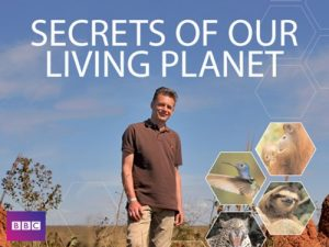 Secrets.of.Our.Living.Planet.S01.2012.720p.Blu-ray.DTS.x264-DON – 9.6 GB