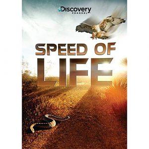 Speed.of.Life.2010.S01.Bluray.1080p.AC3.x264-CHD ~ 13.1 GB