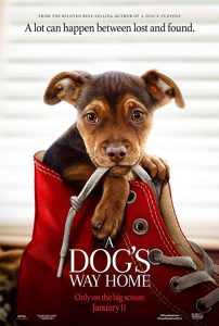 A.Dogs.Way.Home.2019.720p.WEB-DL.DD5.1.H264-CMRG ~ 3.0 GB
