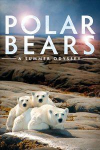 Polar.Bears.A.Summer.Odyssey.2012.720p.Bluray.AC3.5.1.x264-DON – 7.0 GB