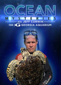 Ocean.Mysteries.with.Jeff.Corwin.S01.1080p.AMZN.WEB-DL.DDP2.0.x264-RCVR ~ 47.6 GB