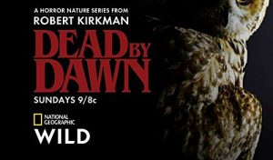 Dead.by.Dawn.S01.1080p.AMZN.WEB-DL.DDP5.1.H.264-TrollHD ~ 18.6 GB