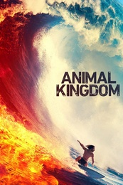 Animal.Kingdom.2016.S04E03.Man.vs.Rock.1080p.AMZN.WEB-DL.DDP5.1.H.264-NTb – 3.1 GB