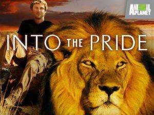 Into.The.Pride.S01.720p.AMZN.WEB-DL.DDP2.0.H.264-NTb – 9.4 GB