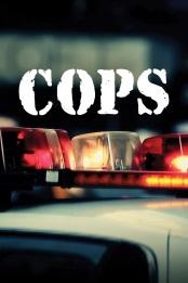 Cops.S33E04.Third.Wheeling.720p.WEB.h264-iND – 867.9 MB