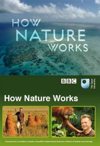 BBC.How.Nature.Works.S01.720p.BluRay.DTS.x264-HDS – 8.1 GB