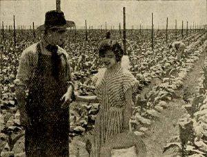 The.Rose.of.Kentucky.1911.720p.BluRay.x264-BiPOLAR – 635.6 MB