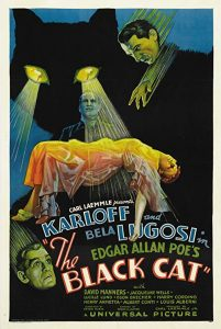 The.Black.Cat.1934.720p.BluRay.x264-SiNNERS – 3.3 GB