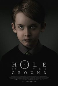 The.Hole.in.the.Ground.2019.REPACK.1080p.BluRay.REMUX.AVC.DTS-HD.MA.5.1-EPSiLON – 22.6 GB
