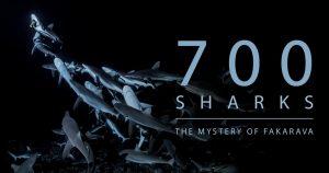 700.Sharks.2018.1080p.BluRay.x264-PussyFoot – 7.7 GB