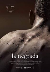 Black.Mexicans.2018.SPANISH.1080p.AMZN.WEBRip.DDP2.0.x264-KAIZEN – 5.5 GB