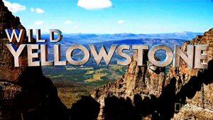 Wild.Yellowstone.S01.1080p.AMZN.WEB-DL.DD+5.1.x264-NTG – 7.6 GB