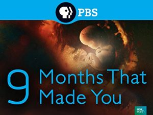 9.Months.That.Made.You.S01.1080p.NF.WEB-DL.DDP2.0.x264-KAIZEN – 8.5 GB
