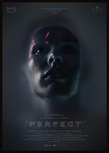 Perfect.2018.1080p.AMZN.WEB-DL.DDP5.1.H.264-NTG – 4.3 GB