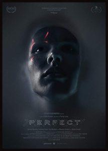 Perfect.2019.1080p.WEB-DL.H264.AC3-EVO – 3.0 GB