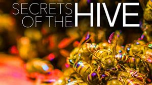 Secrets.of.the.Hive.2015.720p.AMZN.WEB-DL.DDP2.0.H.264-KAIZEN – 1.8 GB