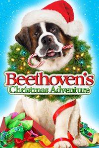 Beethovens.Christmas.Adventure.2011.1080p.AMZN.WEBRip.DDP5.1.x264-ABM – 7.7 GB