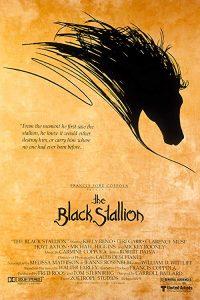 The.Black.Stallion.1979.720p.BluRay.DTS.x264-CtrlHD – 12.7 GB