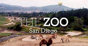 The.Zoo-San.Diego.S01.720p.WEBRip.AAC2.0.x264-CAFFEiNE – 11.4 GB