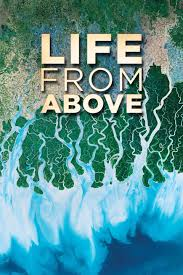 Life.from.Above.S01.720p.PBS.WEB-DL.AAC2.0.H.264-LFA – 7.0 GB