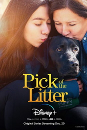 Pick.of.the.Litter.S01E06.Together.at.Last.720p.DSNP.WEB-DL.DDP5.1.H.264-NTb – 1.1 GB