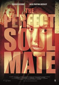 The.Perfect.Soulmate.2017.1080p.AMZN.WEB-DL.DDP5.1.H.264-TEPES – 6.1 GB