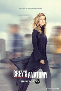 Grey's.Anatomy.S01.1080p.AMZN.WEBRip.DD5.1.H.264-GA – 39.2 GB