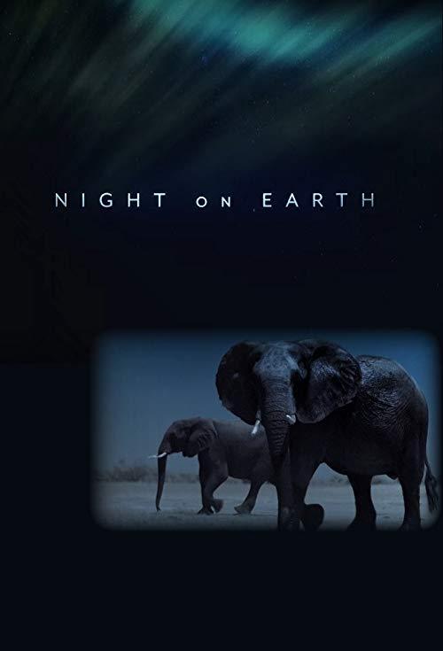 Night On Earth Deutsch Ganzer Film